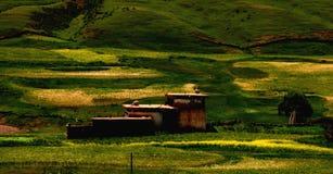 Zone rurali del Tibet Fotografia Stock