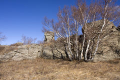 Zone scénique de forêt en pierre d'Arshihaty Photographie stock