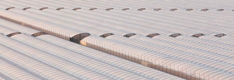 Serra industriale per coltivare le verdure fuori stagione Immagine Stock Libera da Diritti