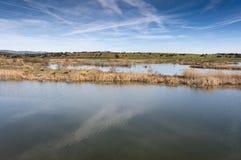 Zone umide connesse con de River Guadiana Fotografia Stock
