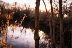 Zone umide della riva del fiume al tramonto nei quattro angoli Fotografie Stock Libere da Diritti
