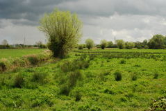 Zone umide di Somerset Fotografia Stock