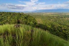 Zone verte Photo libre de droits