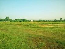 Zone verte Photographie stock