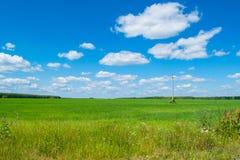 Zone verte avec le ciel bleu image stock