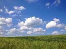 Zone verte, ciel bleu Photographie stock libre de droits