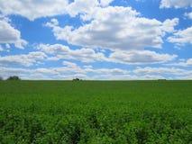 Zone verte, ciel bleu et nuages blancs images libres de droits