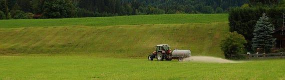 Zone verte d'herbe Images libres de droits