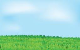 Zone verte et ciel bleu Illustration Libre de Droits