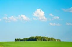 Zone verte et ciel bleu photo stock