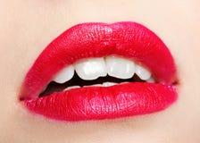 Zonenverfassung des Mädchens Lippen stockfotos