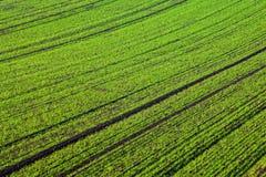 Zones abstraites Photo libre de droits
