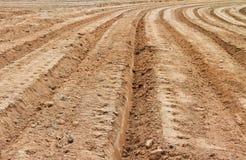 Zones d'agriculture Photos libres de droits