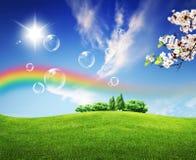 Zones de vert d'horizontal d'été et beau ciel Photos libres de droits