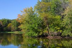 Zones humides de Pecatonica - l'Illinois Images stock