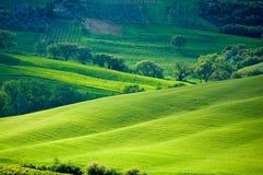 Zones italiennes ensoleillées Image libre de droits