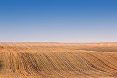 Zones moissonnées d'or de roulis photographie stock libre de droits