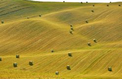 Zones toscanes, Italie Photos libres de droits