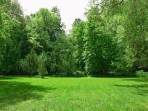 Zones vertes Photos libres de droits