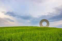 Zones vertes en Toscane photographie stock libre de droits