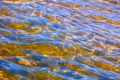 Zonglans op het zeewater Stock Foto's