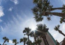 Zongloed door de toevlucht van het palmenstrand royalty-vrije stock foto's