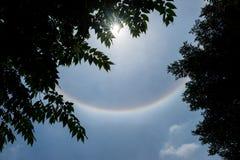 Zonhalo in blauwe hemel met wolk achter silhouetbladeren Royalty-vrije Stock Afbeelding