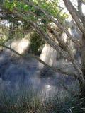 Zonlicht door kokende geothermische mist Royalty-vrije Stock Foto