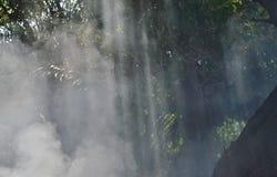 Zonlicht door rook van blad het branden in tuin Stock Foto's