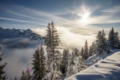 Zonlicht en blauwe hemel boven de wintersprookjesland Stock Fotografie