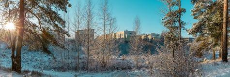 Zonlicht in het de winter bospanorama Het sprookje van de panoramawinter stock afbeeldingen