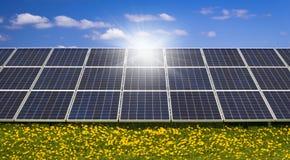 Zonlichtschijnsels van zonnepanelen op een gebied van wilde bloemen royalty-vrije stock foto's