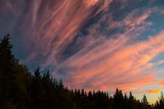 Zonlichtwolken bij Zonsondergang op Blauw Ridge Parkway Stock Afbeelding