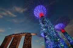 Zonne aangedreven (alternatieve energiebronnen) Supertree-Bosje & Groene eigenschappen ingepakte Marina Bay Sands Hotel tijdens Z Royalty-vrije Stock Foto's