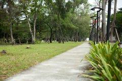 Zonne-aangedreven lantaarnpost in het park Royalty-vrije Stock Fotografie