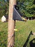 Zonne elektrische omheining Stock Foto