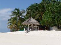 Zonne strand Stock Afbeelding