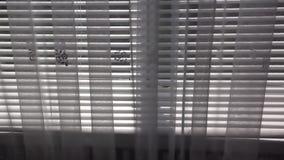 Zonneblinden en Gordijnen 2 HD stock video