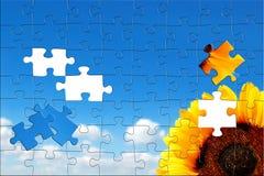 Zonnebloem en blauwe hemel Royalty-vrije Stock Afbeeldingen