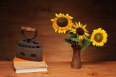 Zonnebloem en boeken met ijzer Stock Foto