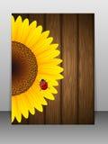 Zonnebloem en onzelieveheersbeestje op houten achtergrond. Royalty-vrije Stock Foto
