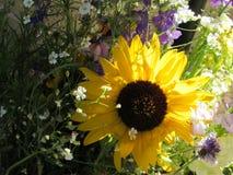 Zonnebloem met Achtergrondzonlicht en Gemengd Bloemenboeket Royalty-vrije Stock Foto