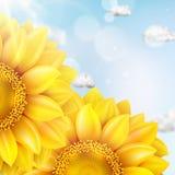 Zonnebloem met blauwe hemel - de herfst Eps 10 Royalty-vrije Stock Afbeeldingen