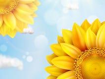 Zonnebloem met blauwe hemel - de herfst Eps 10 Royalty-vrije Stock Foto's