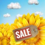 Zonnebloem met blauwe hemel - de herfstverkoop Eps 10 Royalty-vrije Stock Afbeeldingen