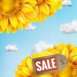 Zonnebloem met blauwe hemel - de herfstverkoop Eps 10 Royalty-vrije Stock Afbeelding