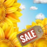 Zonnebloem met blauwe hemel - de herfstverkoop Eps 10 Stock Afbeeldingen