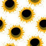 zonnebloem naadloos patroon De achtergrond van de zonnebloemstof Royalty-vrije Stock Foto