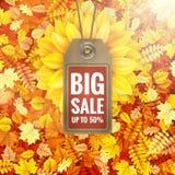Zonnebloem op de herfstgebladerte met verkoopmarkering Eps 10 Stock Foto