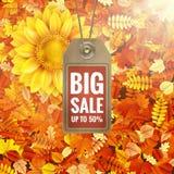 Zonnebloem op de herfstgebladerte met verkoopmarkering Eps 10 Royalty-vrije Stock Afbeelding